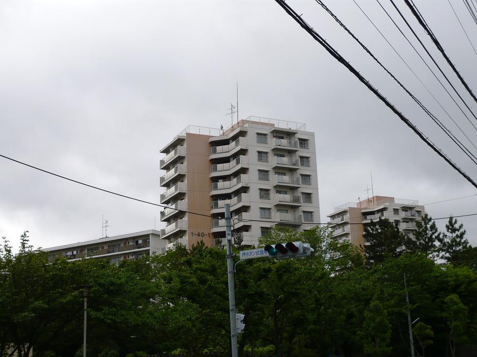 P1010517-2.JPG